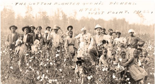missi_plantation_1908.jpg