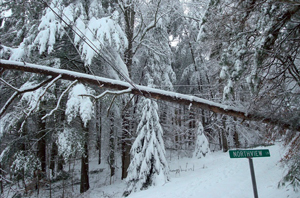 ne_snowstorms01-31-2012.jpg