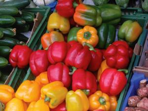 vegetables300x225.jpg
