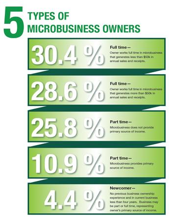 5_microbusiness_2013.jpg