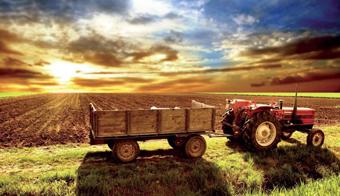 farming_1.jpg