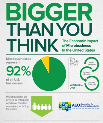 microbusiness_2013.jpg