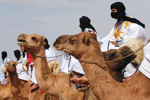 western_sahara_02-10-2015.jpg