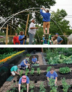 hoop-house_garden12-14-2010.jpg