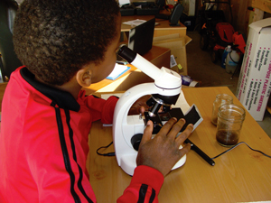 student_microscope12-13-2011.jpg