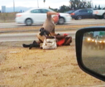 chp_beating_07-22-2014.jpg