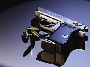 gun_300x225_1.jpg