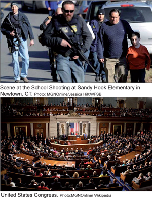 sandyhook_congress_01-15-2013.jpg
