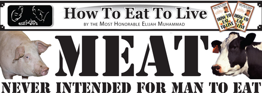 meat_how_to_eat_to_live.jpg