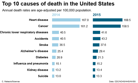 2015_causes-of-death_usa.jpg