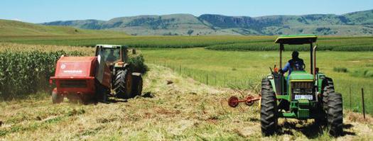 zimbabwe-agriculture_04-04-2017.jpg