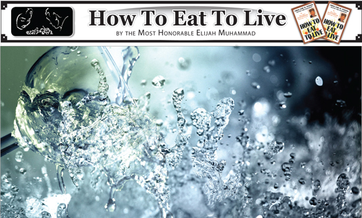 Abundancy-of-Life-How-to-Eat-to-Live.jpg