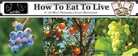 Eat-to_Live-prolongs-life_02-26-2019_1.jpg