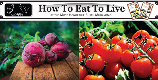 how-to-eat-to-live_06-11-2019.jpg